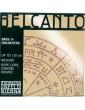 Belcanto Orchestre