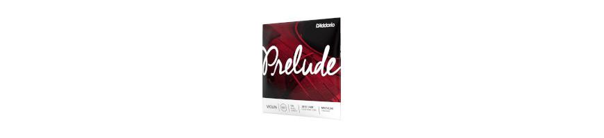 Cordes violon Prelude
